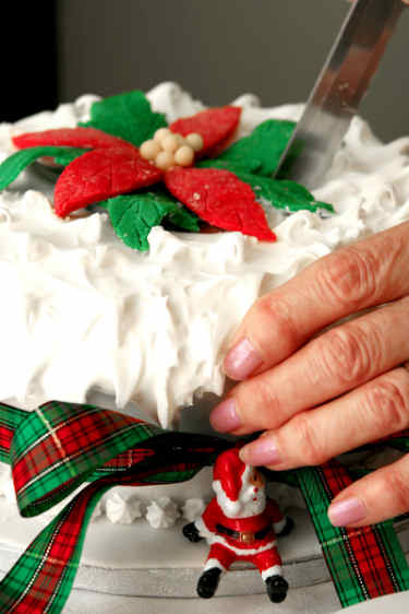 Christmas Cake Designs With Royal Icing : Traditional Christmas Cake Recipe